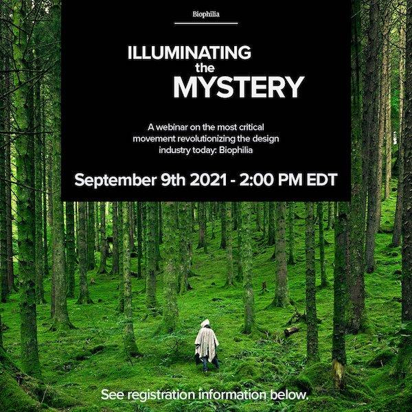 illuminating the mystery
